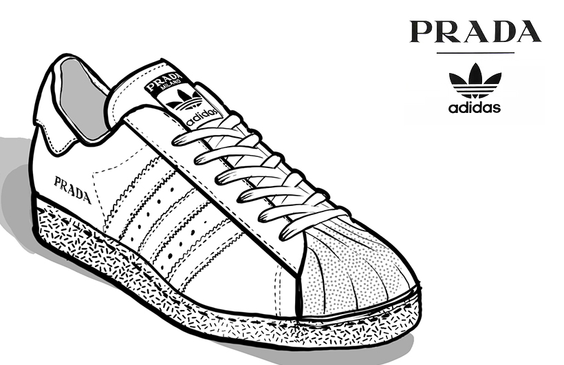 prada adidas sneaker illustration