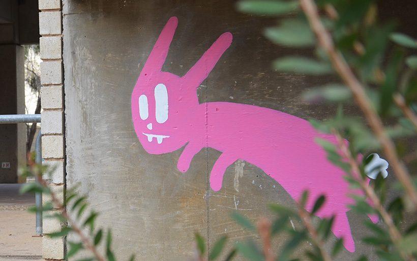 pink rabbit street art canberra